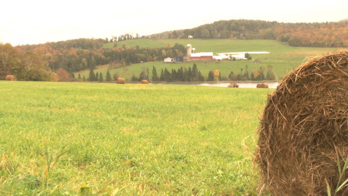 Scenic Farm With Hay Bail