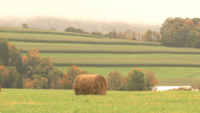 Hay Bail WIth Rows Of Crops In Distance
