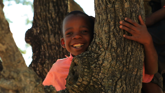 Closeup of a Little Boy in a Tree
