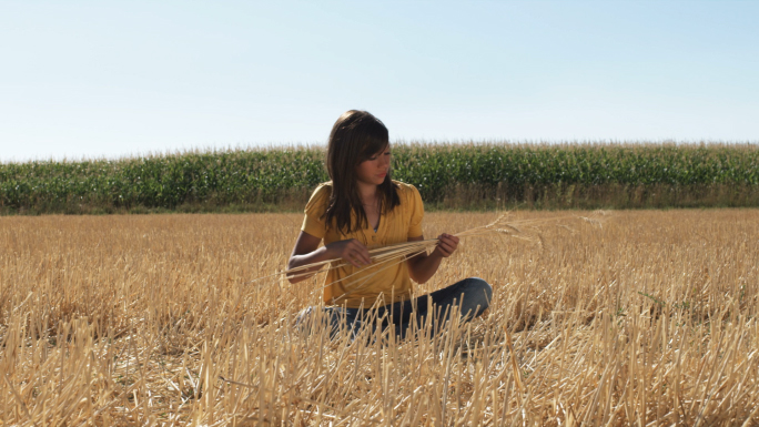 Girl in Sits in a Wheat Field in Front of Corn 2