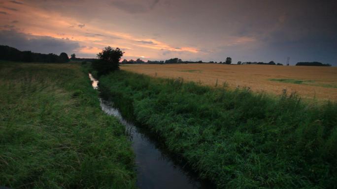 River in Wheat Field Near Copenhagen