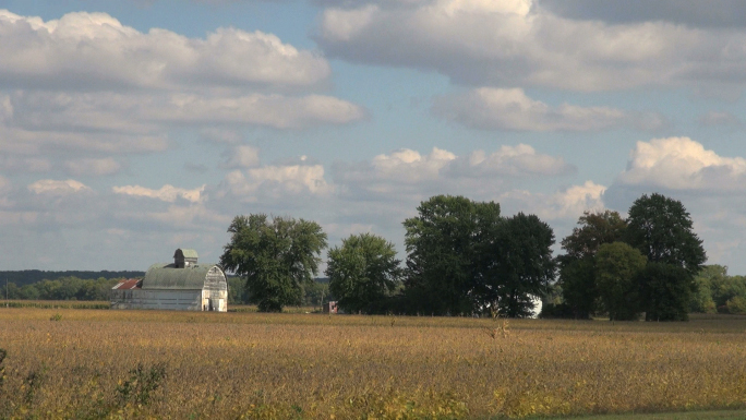 Old White Barn in Field Landscape