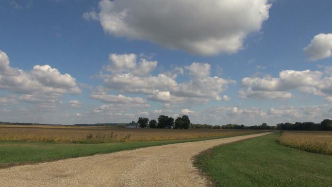 Dirt Road Througb Open Farmland