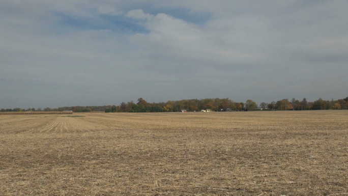 Landscape of Farmland